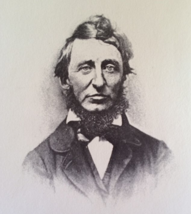 Henry David Thoreau: Photograph of a Portrait from Life