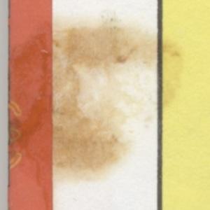 inner front cover detail 1.jpg