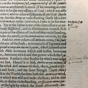 Marginal notes in the first book of Sir Walter Ralegh's History of the World, 1614