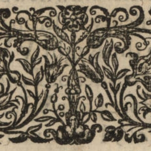 1633 ornament flowers butterflies.jpg